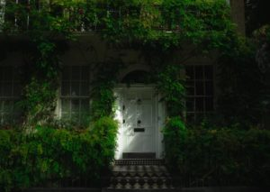 house door covered in foliage
